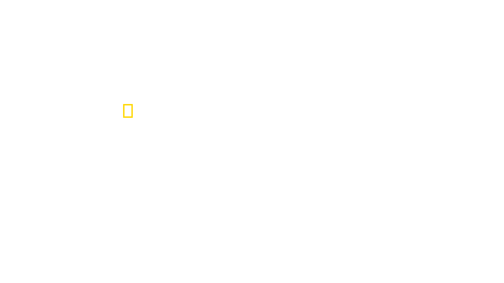 Watch Critter Fixers Country Vets Disney