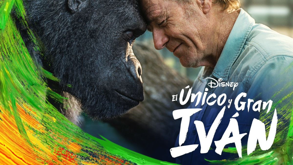 Disney+: Estrenos para el mes de Enero – ANMTV