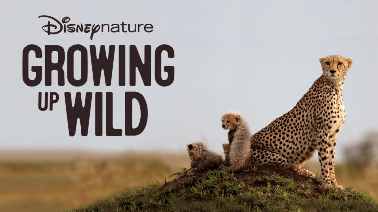 Growing Up Animal - Discovery+