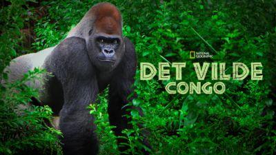 Det vilde Congo