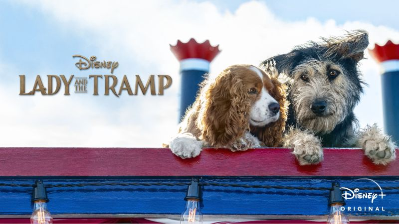 Watch Lady And The Tramp Full Movie Disney